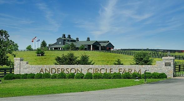 Sold! Kentucky's Anderson Circle Farms