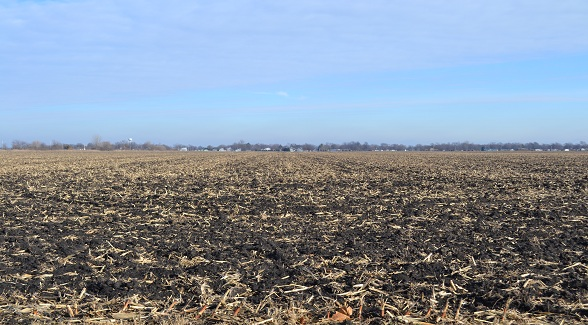 Sold! Cropland in Vermilion County, Illinois