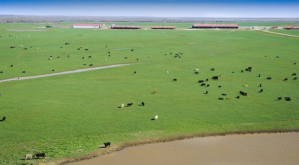 Sold oklahoma s waurika farms the land report