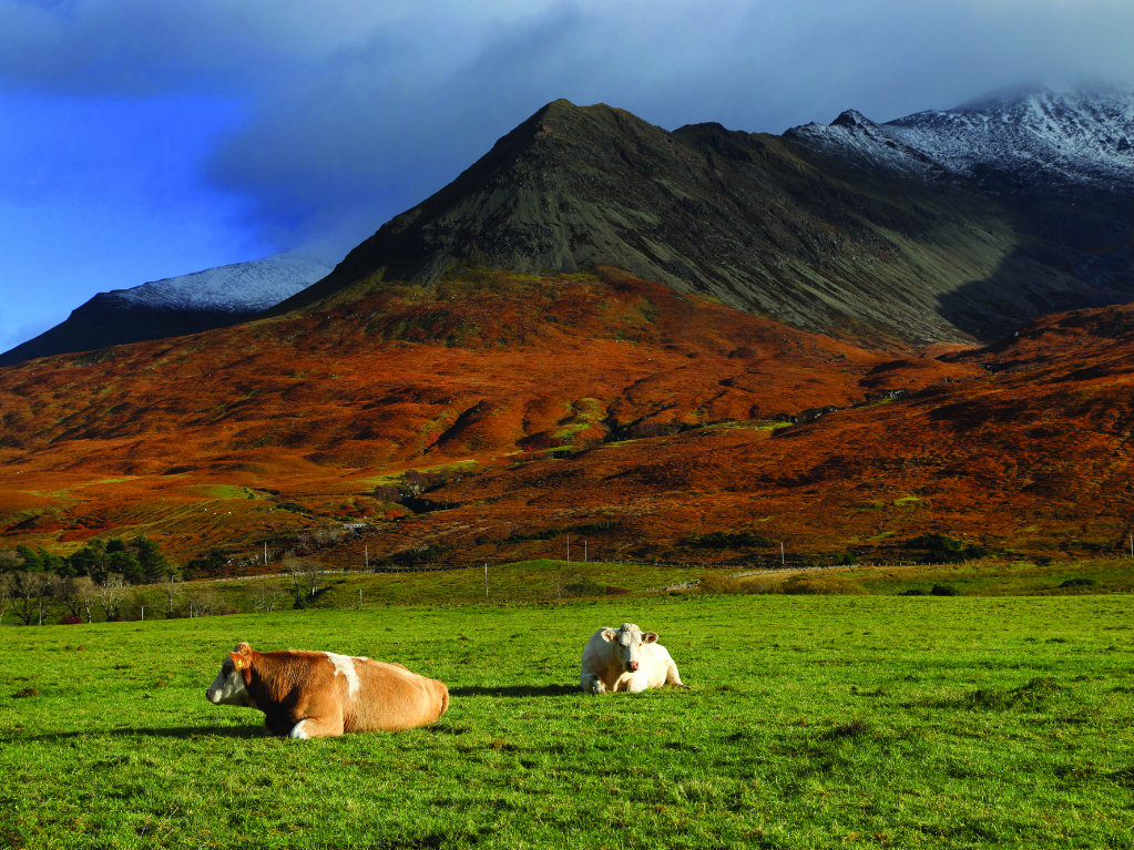 A recently released report commissioned by the Scottish Government recommends passage of laws limiting private ownership of land. On September 18,...