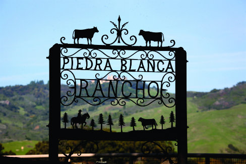 Known worldwide as the home of Hearst Castle, 82,000 acres Piedra Blanca Rancho is a landmark cattle ranch overlooking the Pacific Ocean.