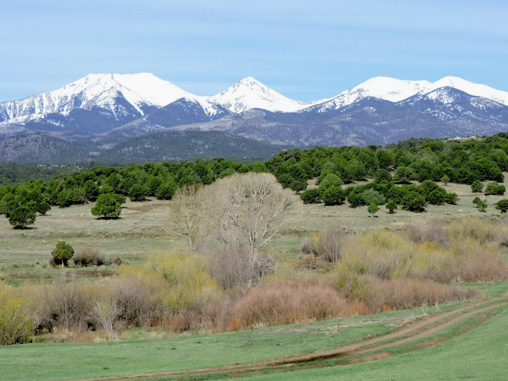 Ranch Marketing Associates www.rmabrokers.com (970) 535-0881 2013 Sales: $100 – $200 Million Who: Focuses on ranches, farmland, and...