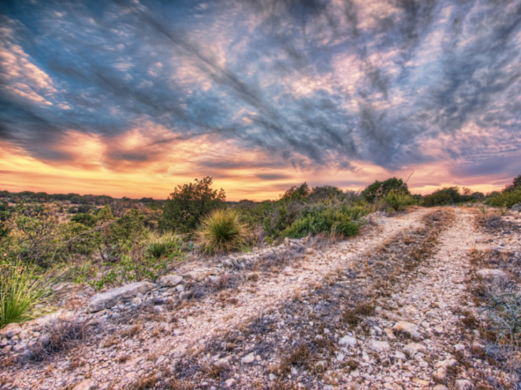 The duPerier Texas Landman www.tripduperier.com (830) 755-5205 2013 Sales: $200 – $300 Million Who: Specializes in farm and ranchland...