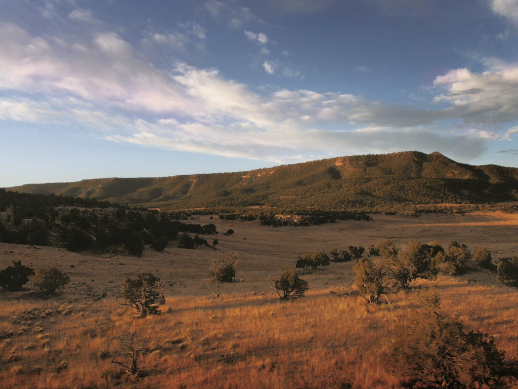 No. 32 D.R. Horton 262,805 acres (up 176,805 acres) This past summer, the Texas homebuilder added the Great Western Ranch to his holdings, which...