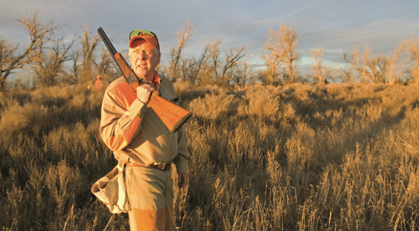 Over the last half century, Boone Pickens has nurtured a threadbare stretch of the Texas Panhandle back to health. Originally less than 3,000 acres, his Mesa Vista Ranch now covers more than 65,000 acres (100-plus square miles) of prime quail habitat that is hunted 50 to 60 days a year. The covey count this season averaged just over 40 per day.
