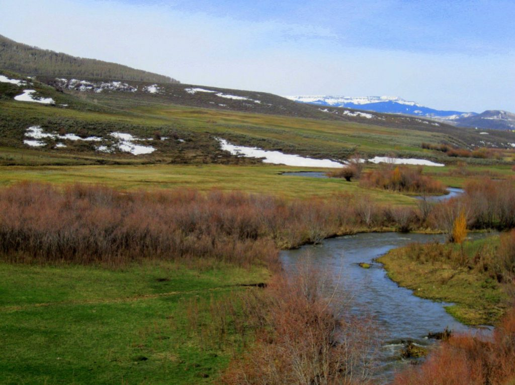 A fourth-generation Routt County ranching family has finalized a conservation easement on their 656-acre ranch. The Stankos conserved 141 acres of...