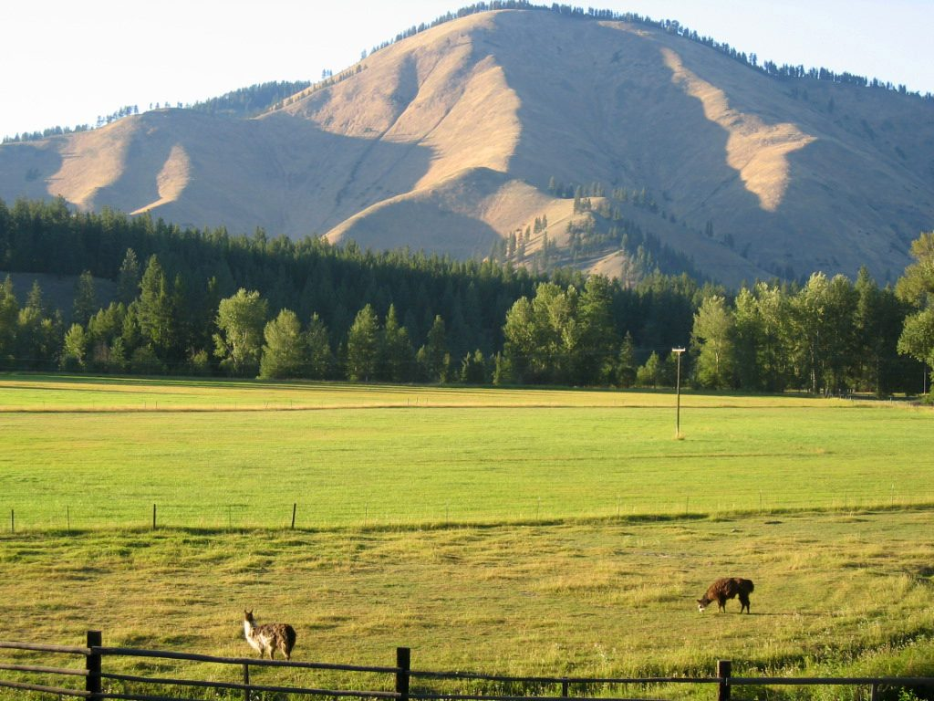 No. 46 Galt Family 262,000 acres Former Montana Fish, Wildlife, and Parks Commissioner Errol Galt owns the Martinsdale Ranch near the center of the...