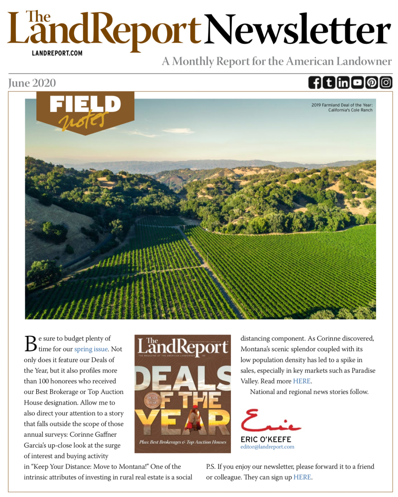 The Land Report June 2020 newsletter cover