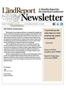 LR_Newsletter_November2010