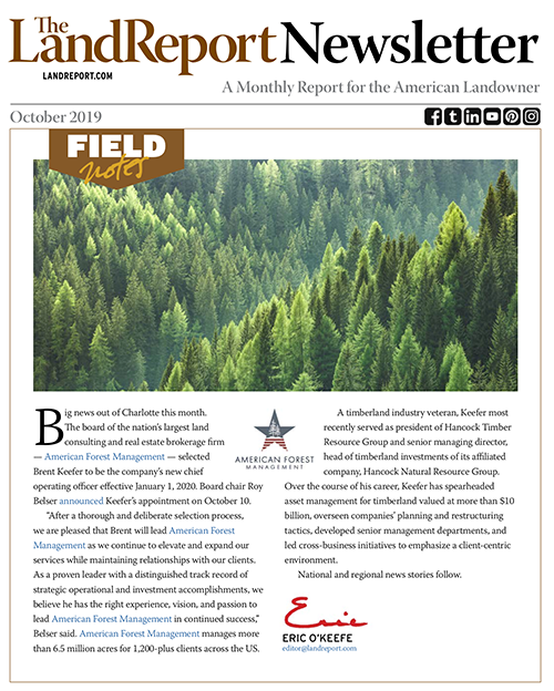 The Land Report newsletter cover