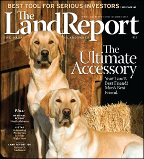 The best dog to buy for your rural land | The Land Report
