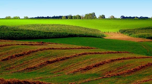midwest-farm-land