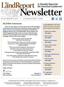 LR_Newsletter_December2010