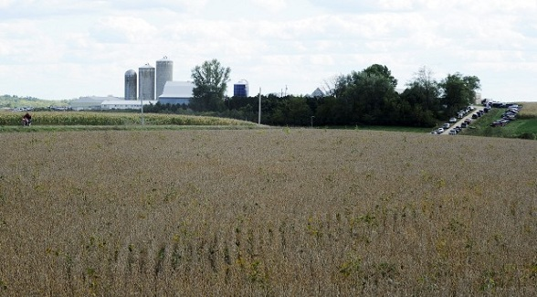 Minnesota Agricultural Land Tops $14,000 per Acre