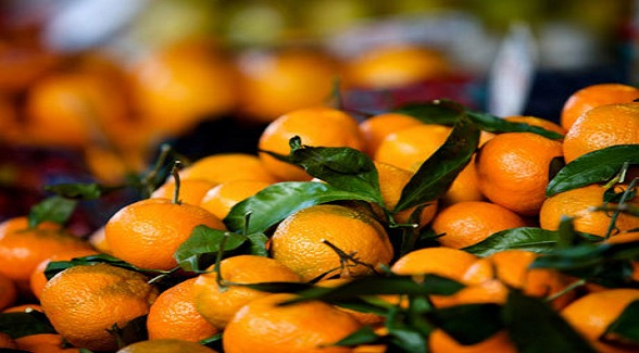 Coca-Cola Commits $2 Billion to Citrus Growers