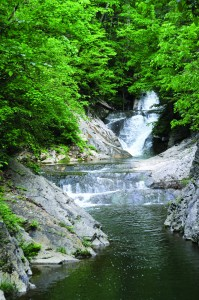 Tiny Cedar Creek, a tributary of the James River, was the force that carved the massive limestone landmark.
