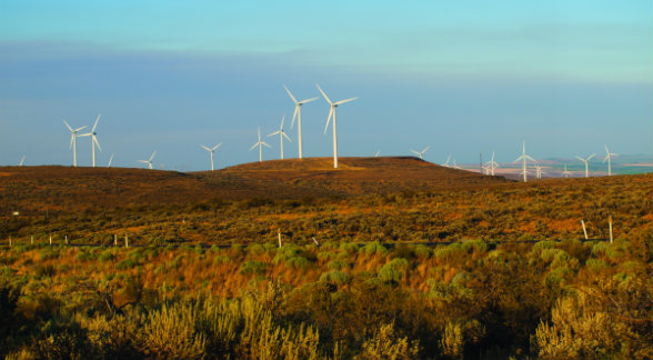 WindTurbines_lg