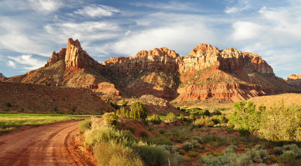 Brilliantly colored Navajo sandstone is a hallmark of the Trees as well as Zion National Park.