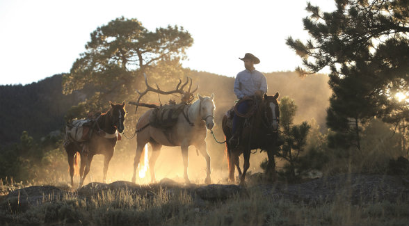 The hunting program on the Wagonhound features elk of unimaginable proportions.