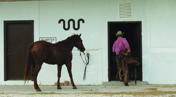 James Clement III is charged with managing and running King Ranch Quarter Horses.