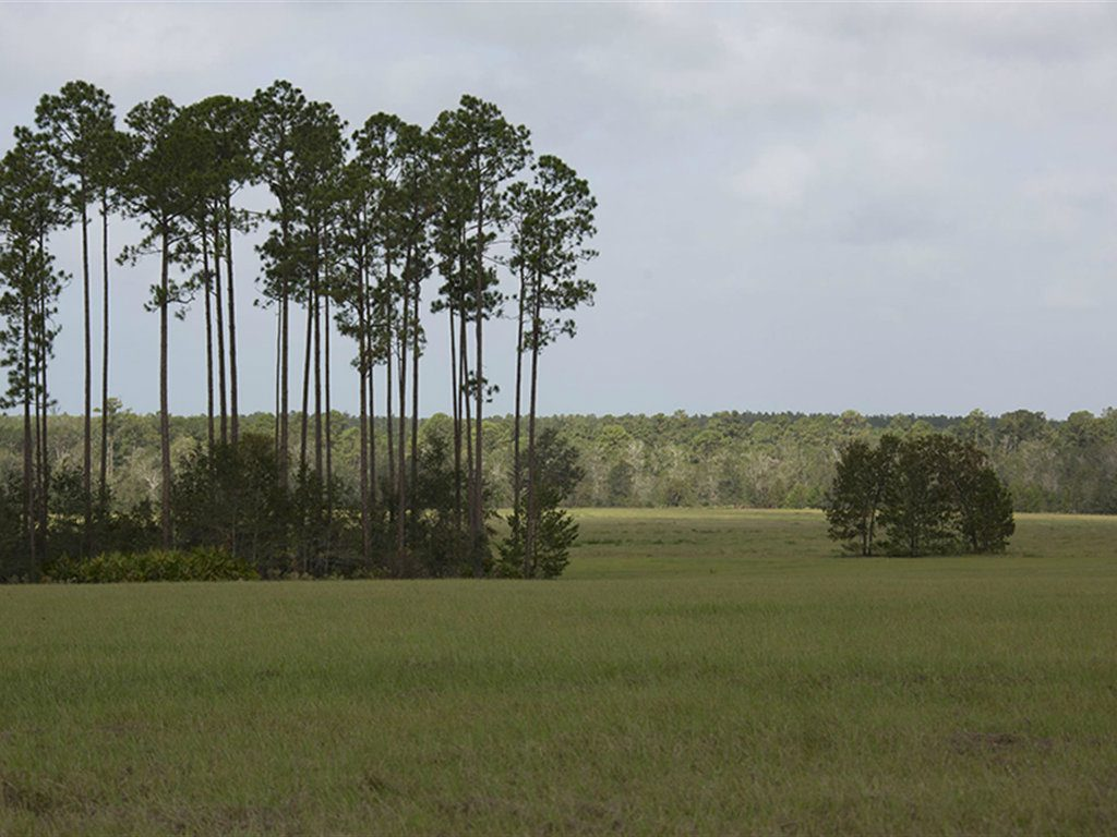 Located in Clay County, Florida, the property known as 3 Creeks Crossing recently sold for $3.39 million. Tony Wallace of Saunders Real Estate had...