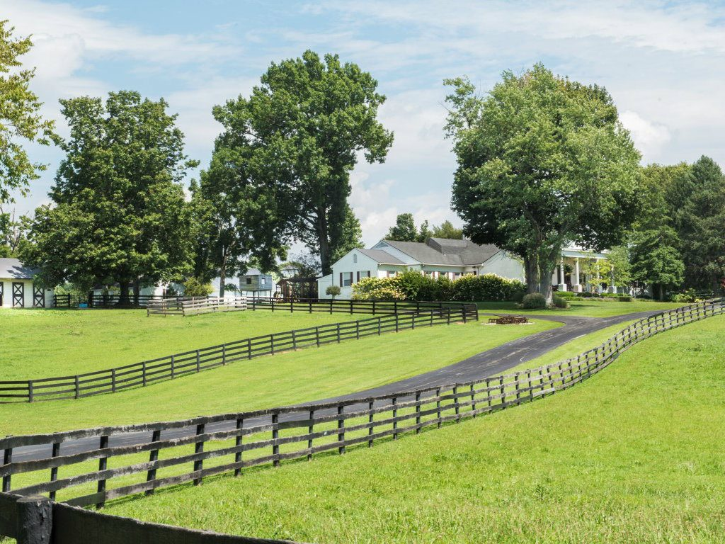 Actor Johnny Depp, famous for The Pirates of the Caribbean films, has lowered the asking price for his 41-acre horse farm. The Kentucky property,...