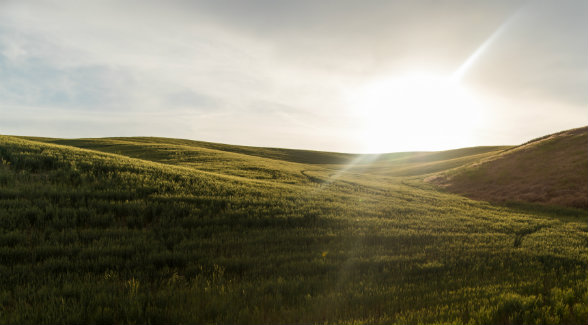 Land Report 2018 Farmland Deal of the Year: Walla Walla Masterpiece