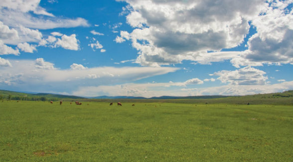 Colorado Cattlemen's Agricultural Land Trust and Yampa Valley Land Trust Merge